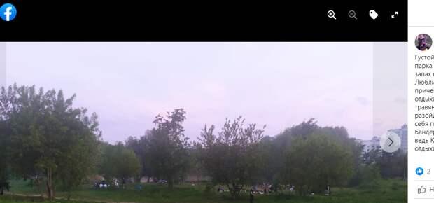 Облюбовавшие парк 850-летия Москвы шашлычники мешают местным жителям