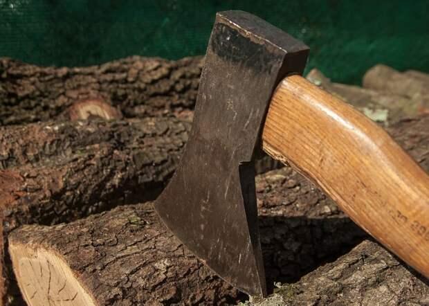 Остатки от упавшего дерева на Кронштадтском бульваре убраны