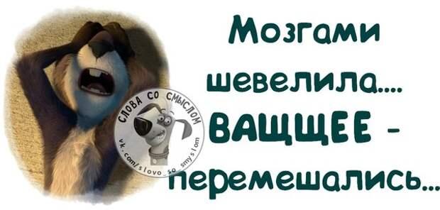 5402287_136739913_5672049_1408388194_frazochki15 (604x289, 39Kb)