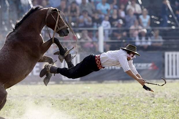 Сегодня в Америке родео — это забава. Правда, увечья, которые получают там ковбои, не очень смешные.