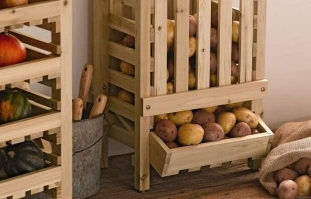 Как хранить картофель в квартире, чтобы он оставался свежим до весны