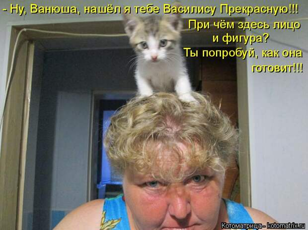 Котоматрица: - Ну, Ванюша, нашёл я тебе Василису Прекрасную!!! При чём здесь лицо  и фигура? Ты попробуй, как она готовит!!!