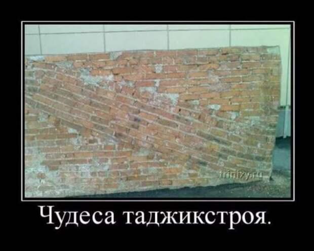 5402287_zabavatutbild2925020501202112 (634x509, 32Kb)