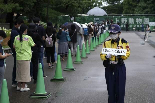 Жить по-японски? Каких стандартов гигиены нам необходимо придерживаться
