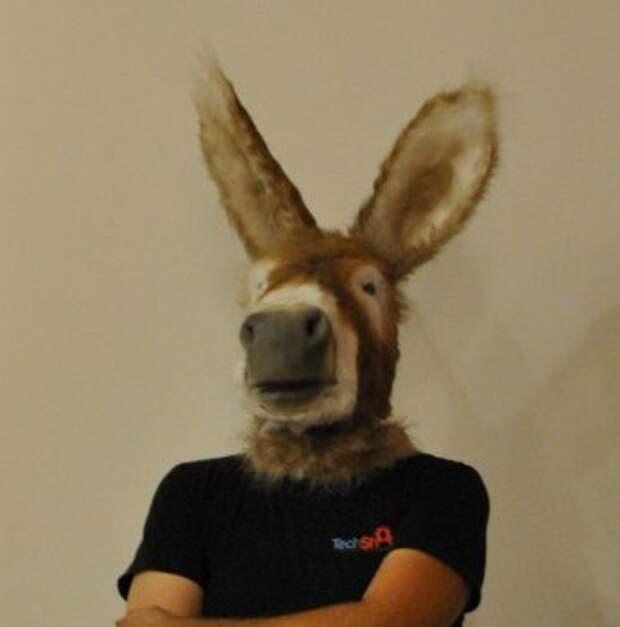Как сделать маску осла