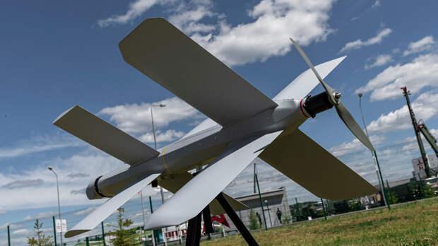 Заслуженный пилот Сытник объяснил, зачем дронам «Ланцет» минировать воздушное пространство