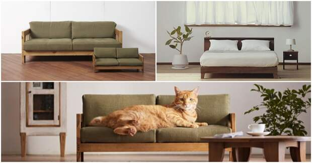 Мебель для любимых кошек: и чтобы все, как у людей!