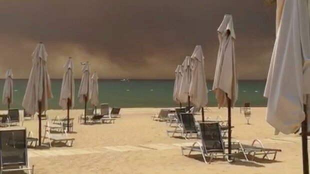 В Бодруме потушили лесной пожар