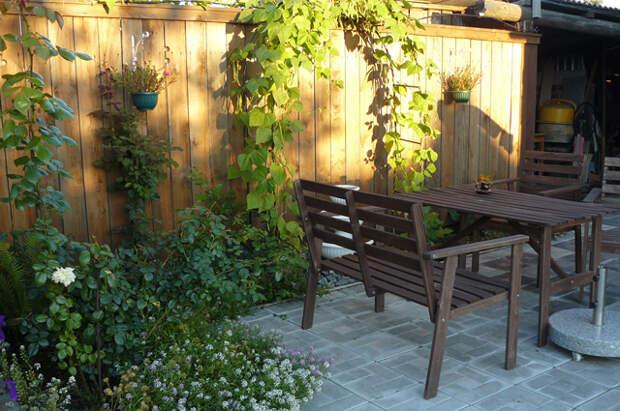 «Поднятая целина». Восстановить дом и обустроить сад...