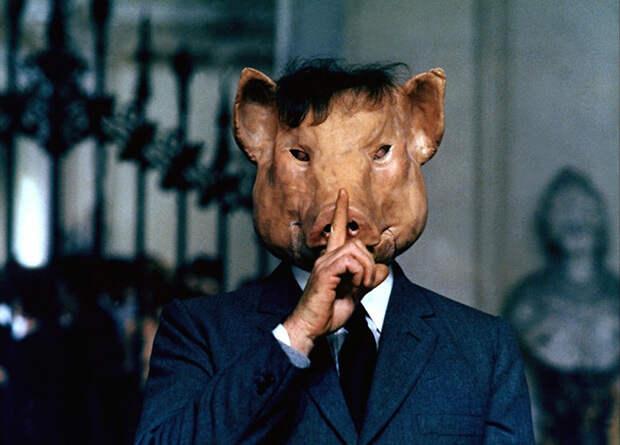 Функции мозга свиньи восстановлены через четыре часа после смерти
