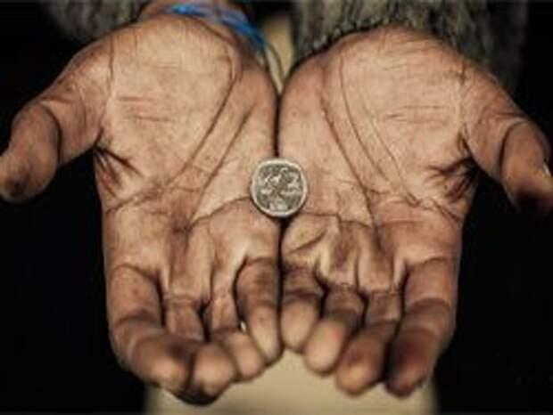 Новость на Newsland: Закон генетической нищеты