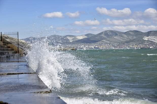 В Новороссийске в Черное море сбрасывали сточные воды