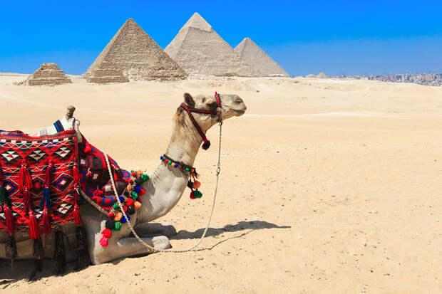 Названа дата возобновления прямого авиасообщения между Россией и Египтом