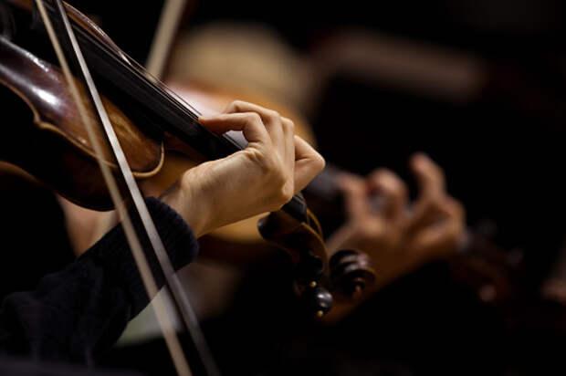 В библиотеке на Верхоянской пройдет музыкальная программа «Камерные ансамбли»