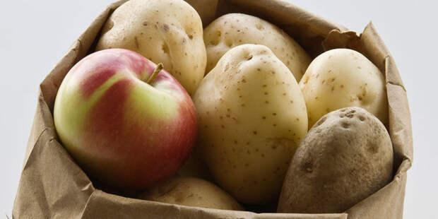 Как правильно хранить овощи и фрукты + другие полезные лайфхаки для кухни