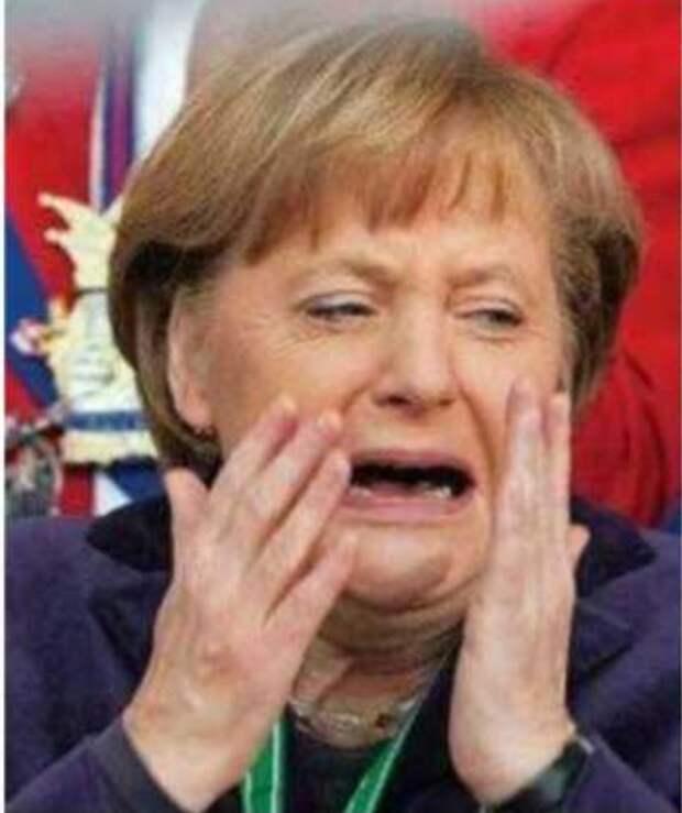 Cатановский: Идиотизм нынешних европейских политиков показал себя во всей красе