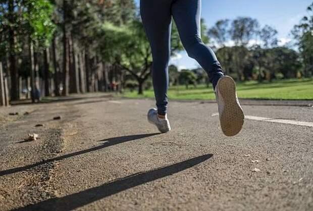 В горах Сочи в мае пройдет Международный фестиваль бега
