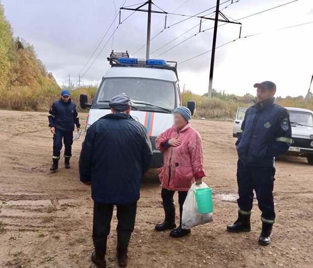 Спасатели помогли двум заблудившимся в лесу Завьяловского района грибникам