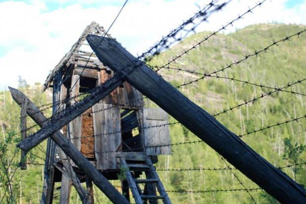 Рецепты самолечения и выживания в сталинских лагерях