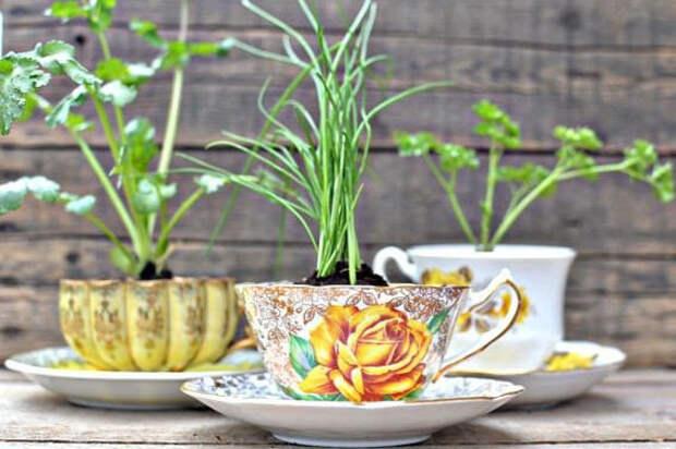 На память бабушкины фарфоровые чашечки