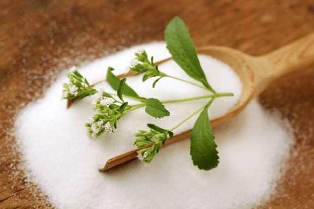 Замените вредный сахар полезной стевией