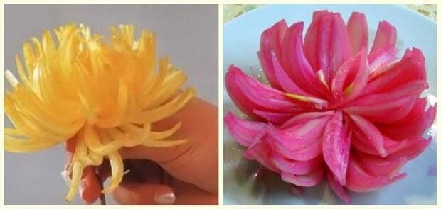 Хризантема из репчатого лука — бесподобное украшение салатов и мясных блюд