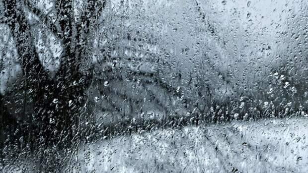 Гидрометцентр пообещал Центральной России обложные дожди на следующей неделе