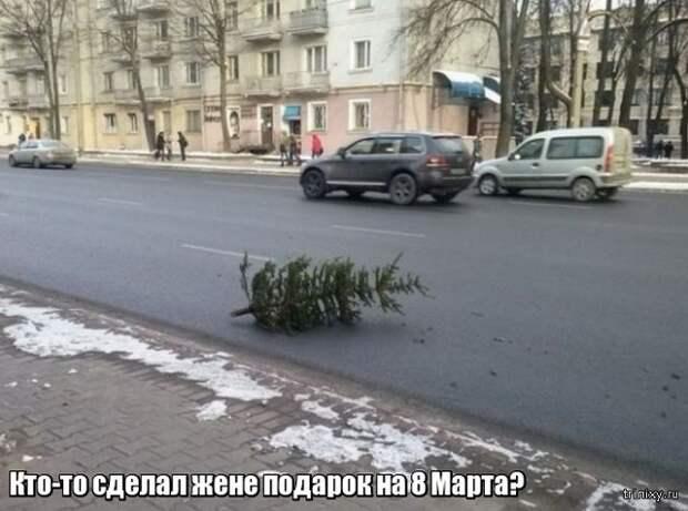 Весна уже пришла? Или пока еще нет? (23 фото)