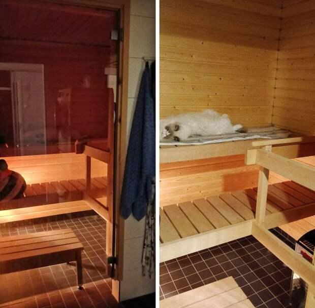 14 особенностей жизни в Финляндии, которые изумляют остальной мир
