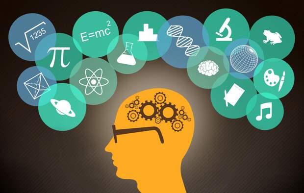 Как работает человеческая память: одна из главных научных проблем