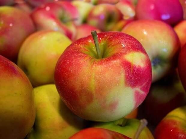 Названы три секрета для сохранения свежести яблок