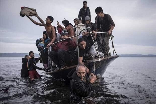 World Press Photo 2016: Лучшие снимки — победители фотоконкурса