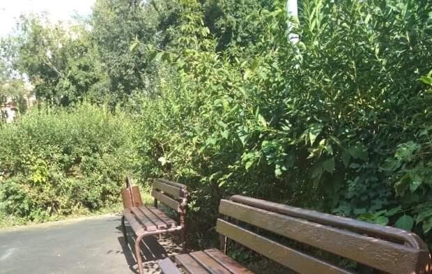 Во дворе дома в проезде Шокальского отремонтировали скамейку