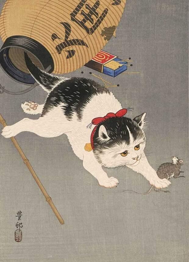 Как празднуют День кошек в разных странах