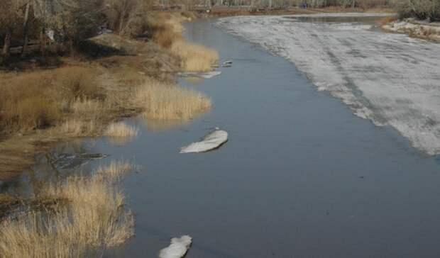 На шести реках Оренбуржья вода за сутки поднялась более чем на метр