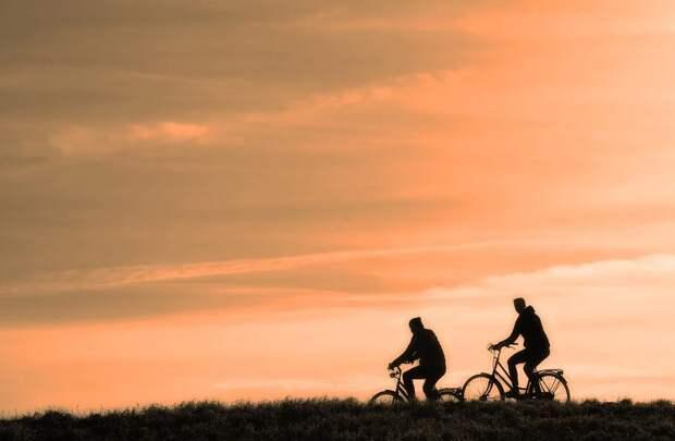 Велодорожки планируют включить в инфраструктуру Симферополя