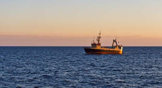 Завод «Море» построит 10 траулеров для добычи рыбы