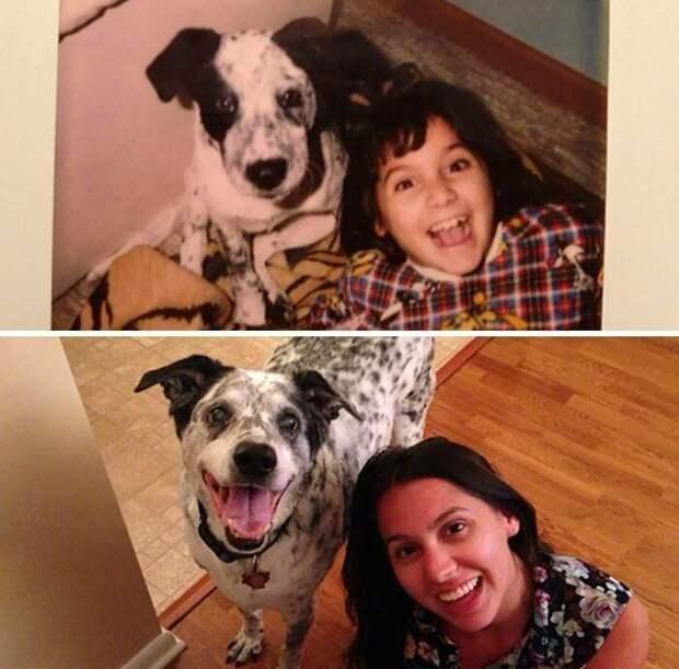 Дружба, проверенная временем дружба, животные, собака