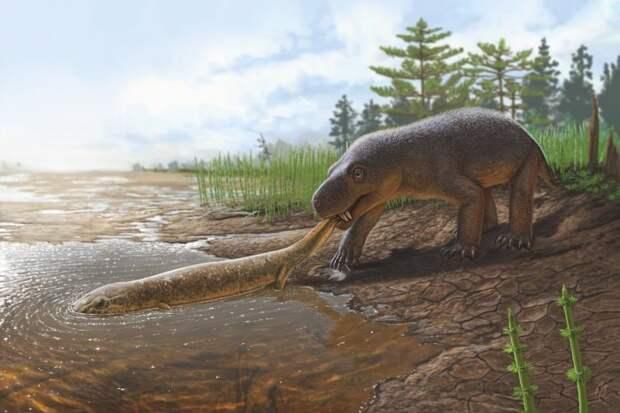 Горыныч существовал: Как выглядел звероящер, останки которого обнаружены в России