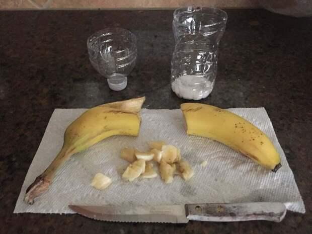 После нарежьте немного банана бутылка, гениально, идея, ловушка, муха, сделай сам