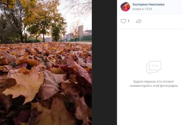 Фото дня: осень в Коптеве
