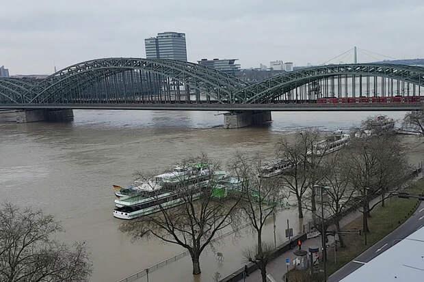 Река Рейн в Германии вышла из берегов из-за таяния снега