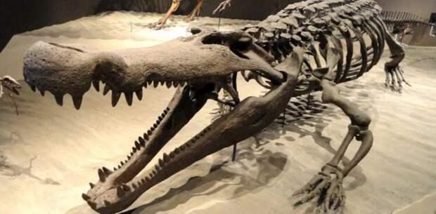 Этих древних монстров боялись даже динозавры!