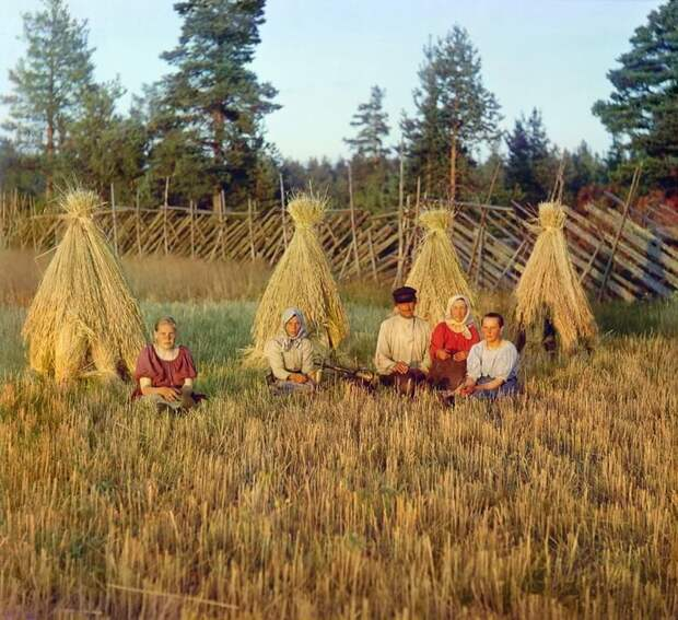 На жнитве. Вологодская губерния, 1909 г. империя., путешествия, цветное фото