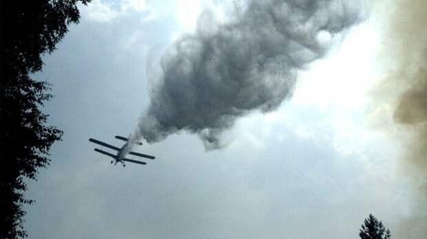 Опубликовано видео ещё одного сбитого самолета Азербайджана