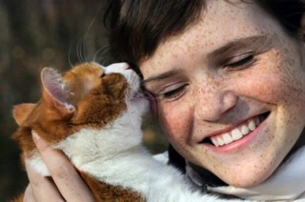 кошачье проявление любви (2)