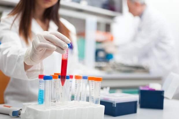 Дешево и сердито: ученые нашли бюджетный способ борьбы с раком ynews, исследования, рак, сода, ученые, химиотерапия
