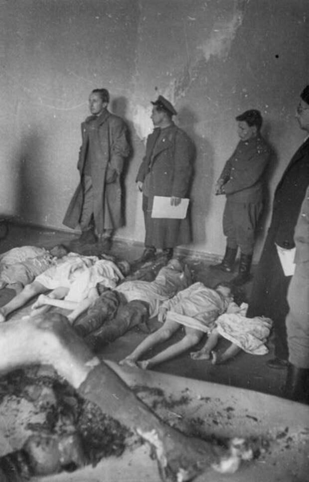 Процедура опознания трупов министра пропаганды и народного просвещения Германии Йозефа Геббельса (в кадре слева видна обгоревшая нога) и его детей, перед вскрытием в пригороде Берлина местечке Бух.