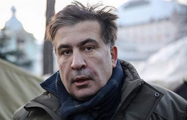 Козла снова пустили вогород— эксперт одеятельности Саакашвили наУкраине