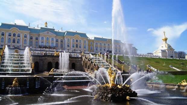 В Петергофе четыре музея закрылись из-за коронавируса